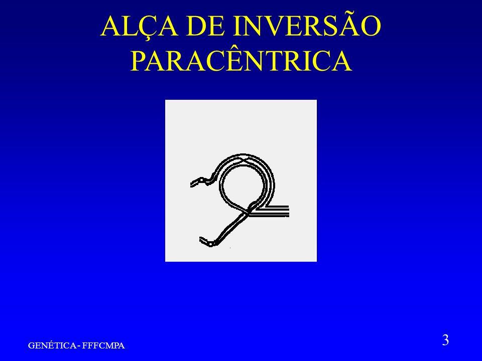 GENÉTICA - FFFCMPA 3 ALÇA DE INVERSÃO PARACÊNTRICA