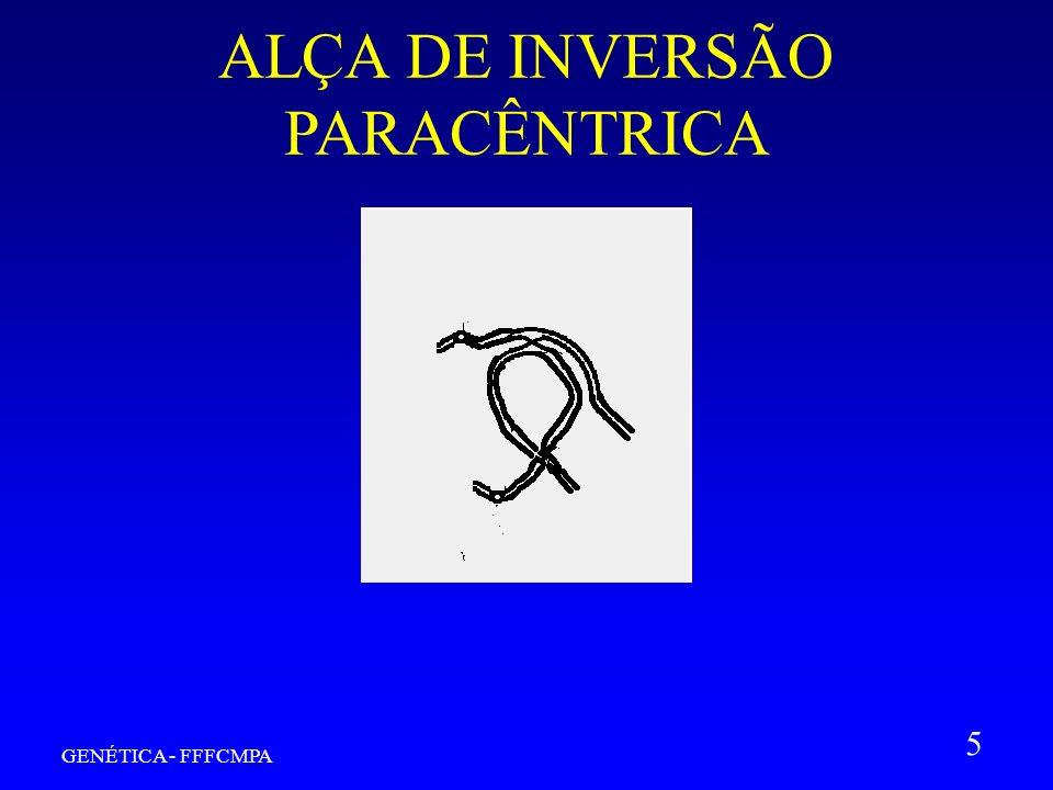GENÉTICA - FFFCMPA 5 ALÇA DE INVERSÃO PARACÊNTRICA