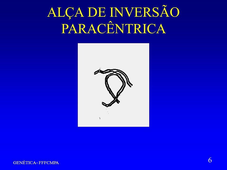 GENÉTICA - FFFCMPA 6 ALÇA DE INVERSÃO PARACÊNTRICA