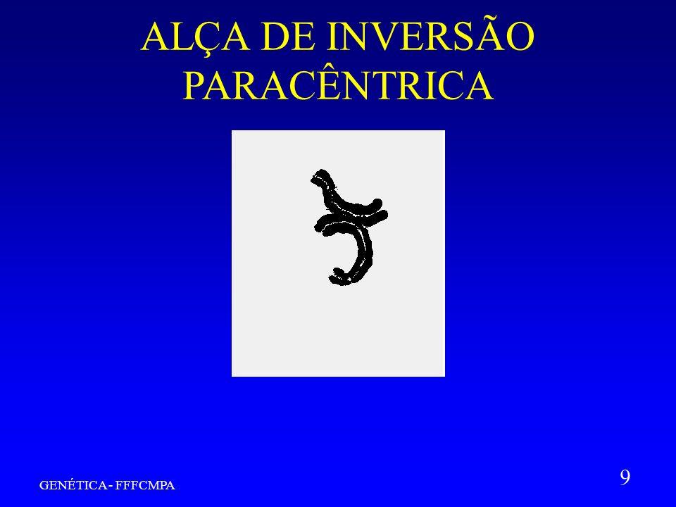 GENÉTICA - FFFCMPA 9 ALÇA DE INVERSÃO PARACÊNTRICA