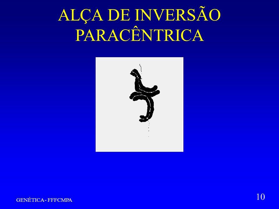 GENÉTICA - FFFCMPA 10 ALÇA DE INVERSÃO PARACÊNTRICA