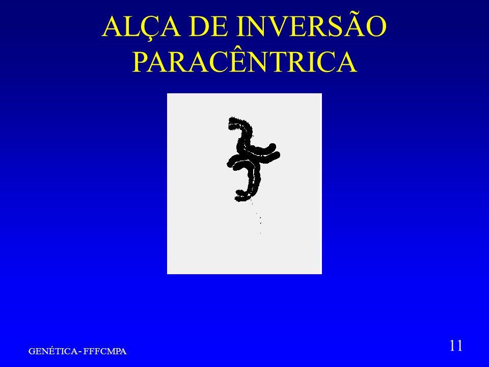 GENÉTICA - FFFCMPA 11 ALÇA DE INVERSÃO PARACÊNTRICA