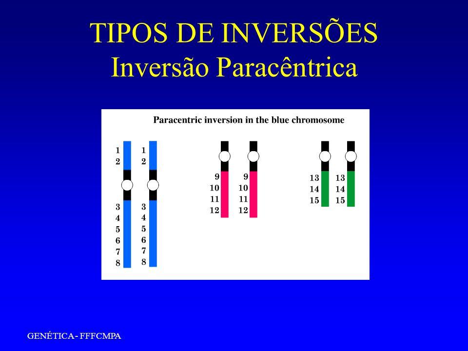 GENÉTICA - FFFCMPA TIPOS DE INVERSÕES Inversão Pericêntrica