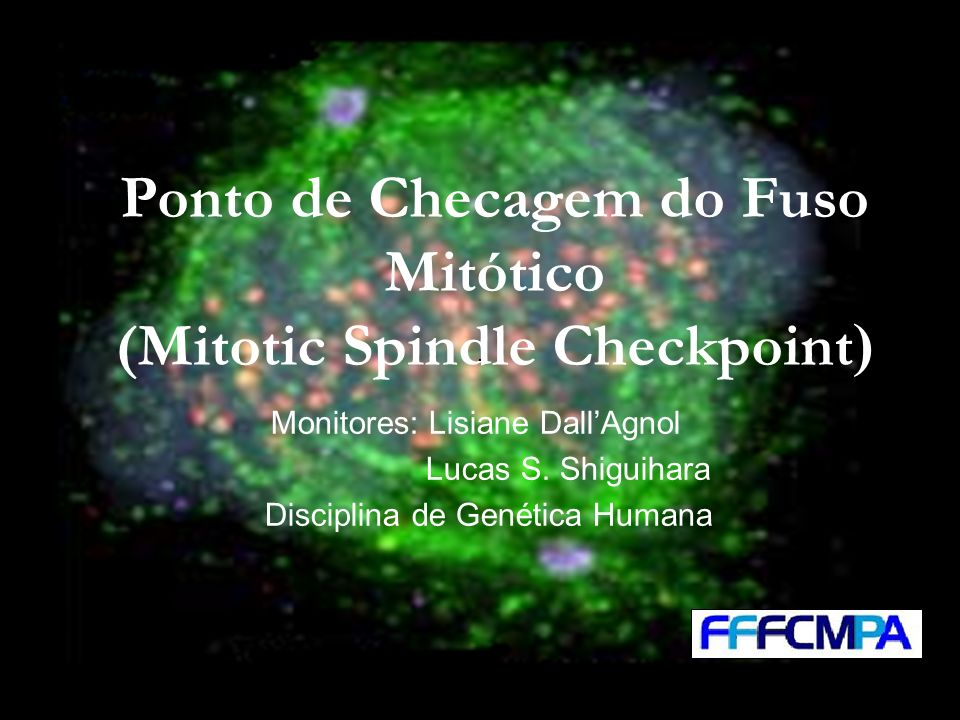 Ponto de Checagem do Fuso Mitótico (Mitotic Spindle Checkpoint ) Monitores: Lisiane DallAgnol Lucas S. Shiguihara Disciplina de Genética Humana