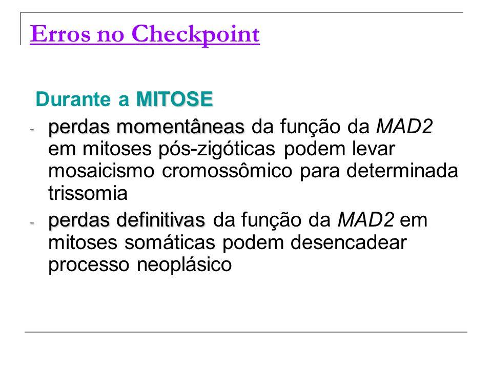 Erros no Checkpoint MITOSE Durante a MITOSE - perdas momentâneas - perdas momentâneas da função da MAD2 em mitoses pós-zigóticas podem levar mosaicism