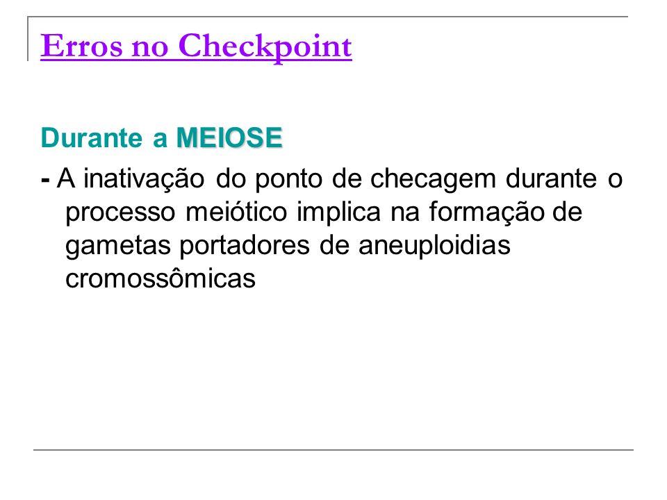Erros no Checkpoint MEIOSE Durante a MEIOSE - A inativação do ponto de checagem durante o processo meiótico implica na formação de gametas portadores