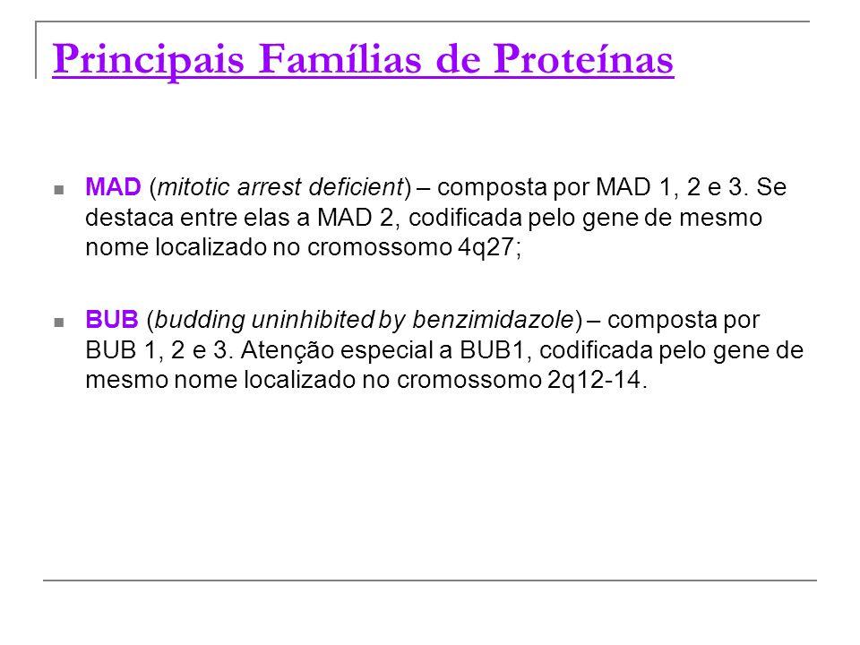 Principais Famílias de Proteínas MAD (mitotic arrest deficient) – composta por MAD 1, 2 e 3. Se destaca entre elas a MAD 2, codificada pelo gene de me