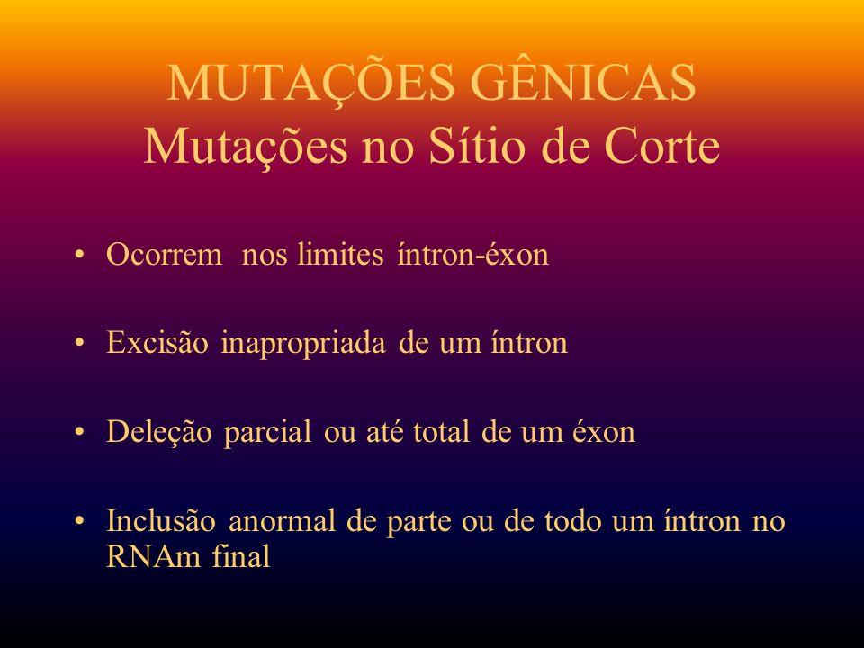 MUTAÇÕES GÊNICAS Mutações no Sítio de Corte Ocorrem nos limites íntron-éxon Excisão inapropriada de um íntron Deleção parcial ou até total de um éxon