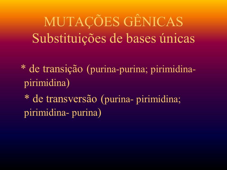 MUTAÇÕES GÊNICAS Substituições de bases únicas * de transição ( purina-purina; pirimidina- pirimidina ) * de transversão ( purina- pirimidina; pirimid