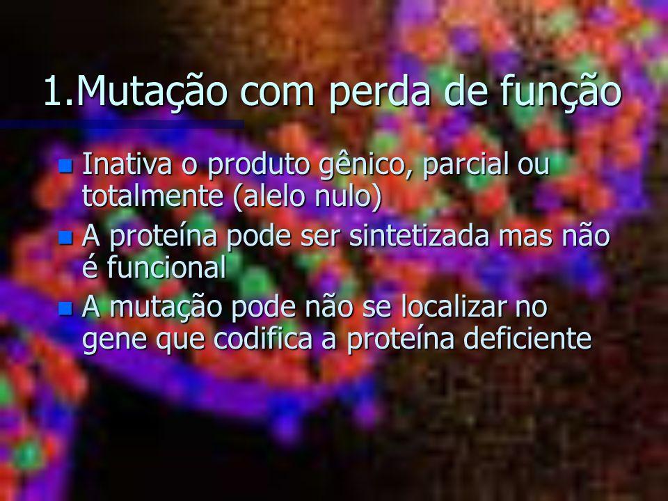 1.Mutação com perda de função n Inativa o produto gênico, parcial ou totalmente (alelo nulo) n A proteína pode ser sintetizada mas não é funcional n A