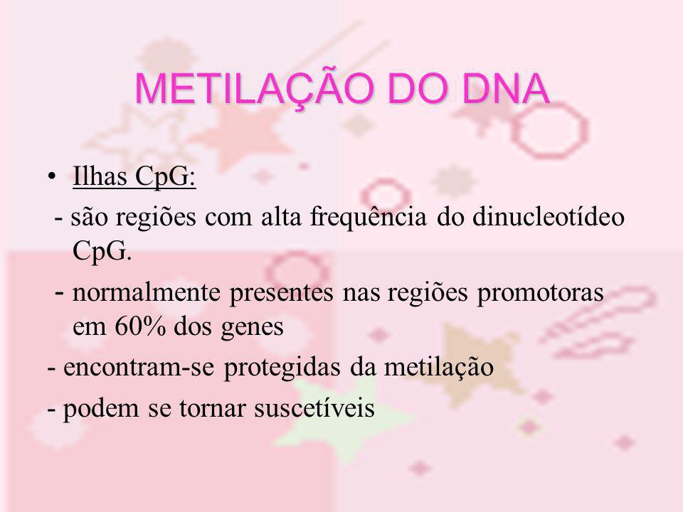 METILAÇÃO DO DNA Ilhas CpG: - são regiões com alta frequência do dinucleotídeo CpG. - normalmente presentes nas regiões promotoras em 60% dos genes -