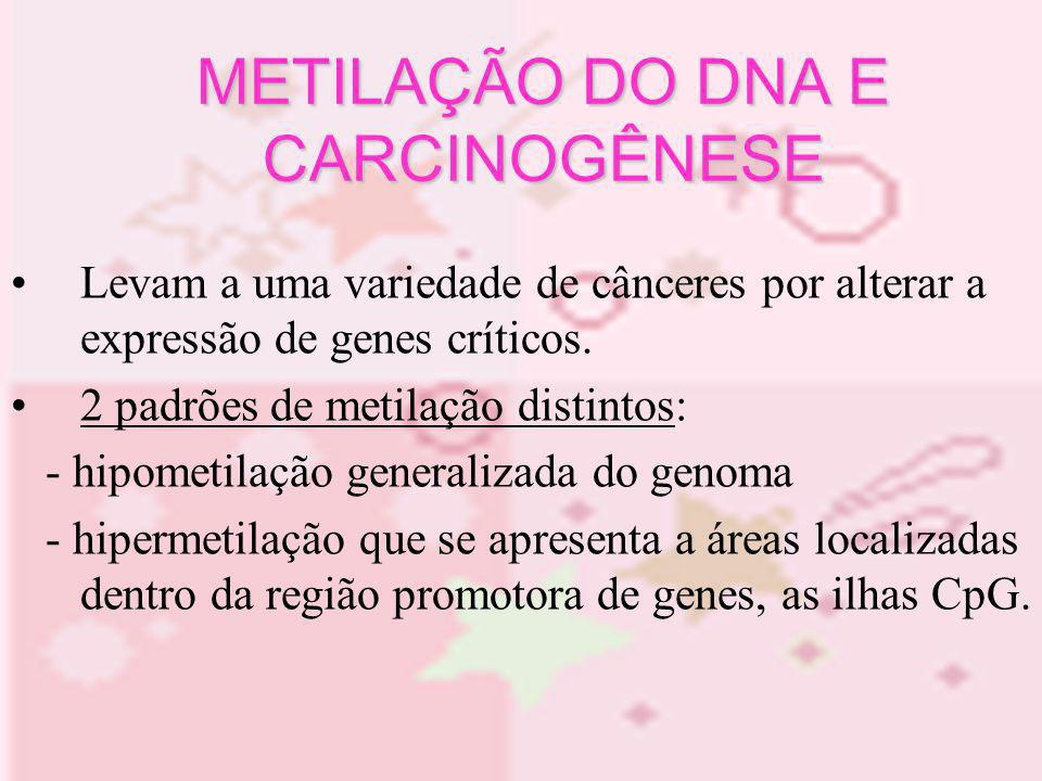 Levam a uma variedade de cânceres por alterar a expressão de genes críticos. 2 padrões de metilação distintos: - hipometilação generalizada do genoma