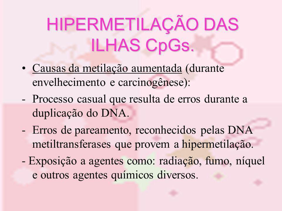 Causas da metilação aumentada (durante envelhecimento e carcinogênese): -Processo casual que resulta de erros durante a duplicação do DNA. -Erros de p