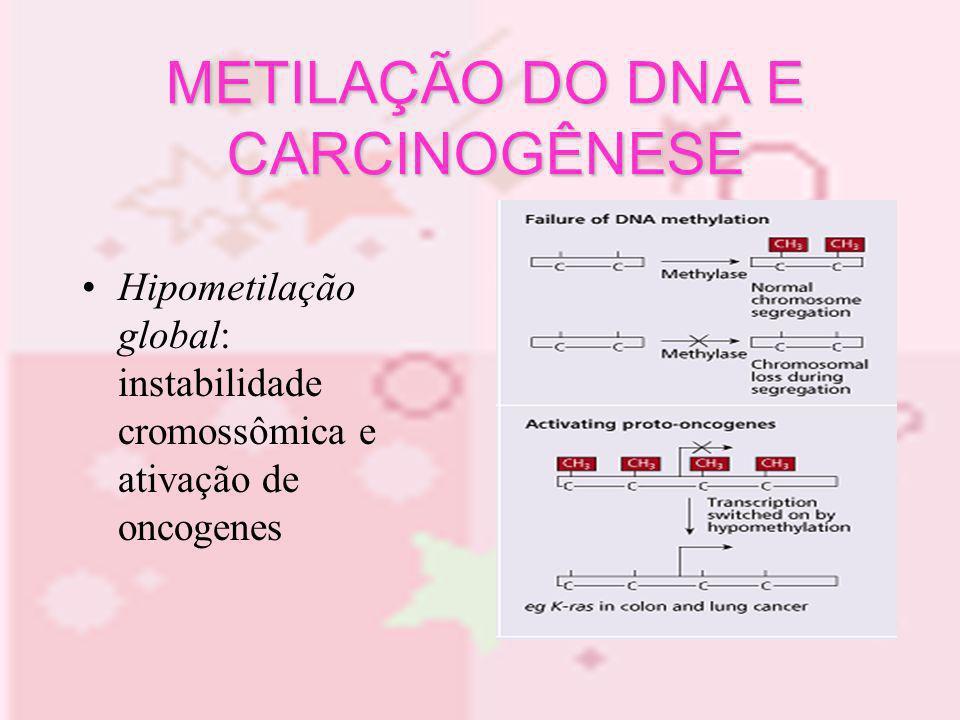 METILAÇÃO DO DNA E CARCINOGÊNESE Hipometilação global: instabilidade cromossômica e ativação de oncogenes