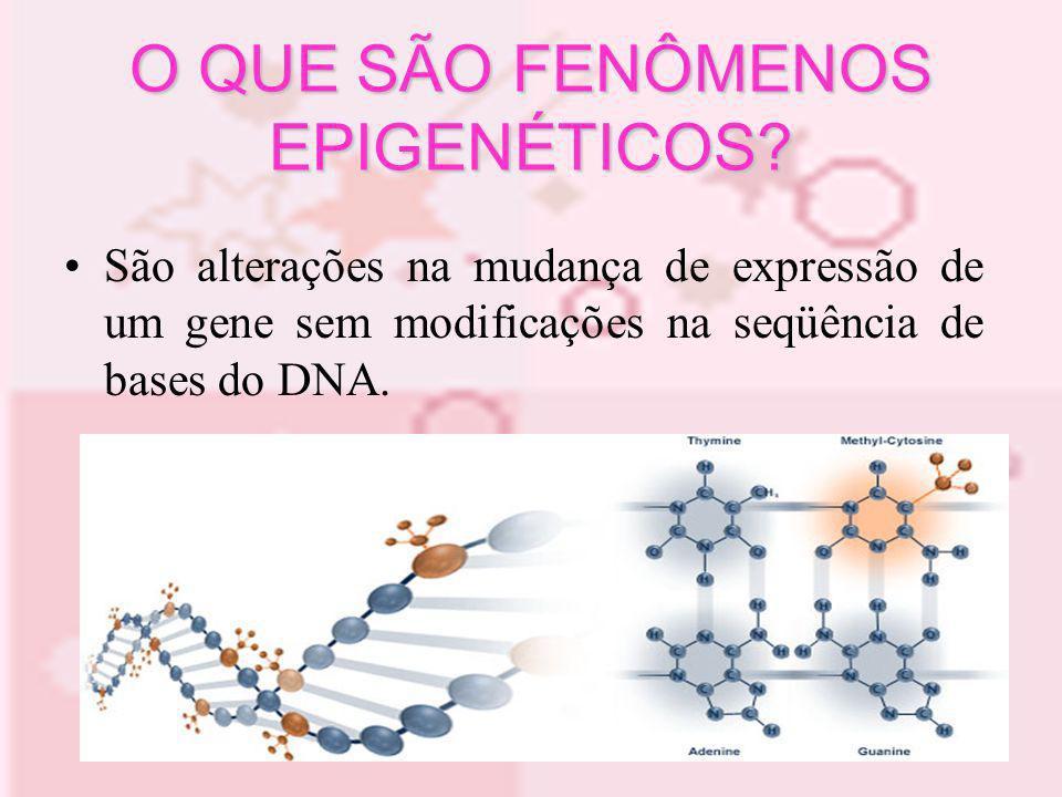O QUE SÃO FENÔMENOS EPIGENÉTICOS? São alterações na mudança de expressão de um gene sem modificações na seqüência de bases do DNA.