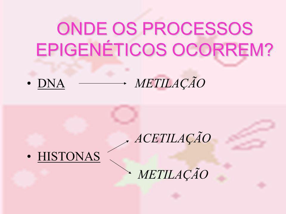 DNA METILAÇÃO ONDE OS PROCESSOS EPIGENÉTICOS OCORREM? DNA METILAÇÃO ACETILAÇÃO HISTONAS METILAÇÃO