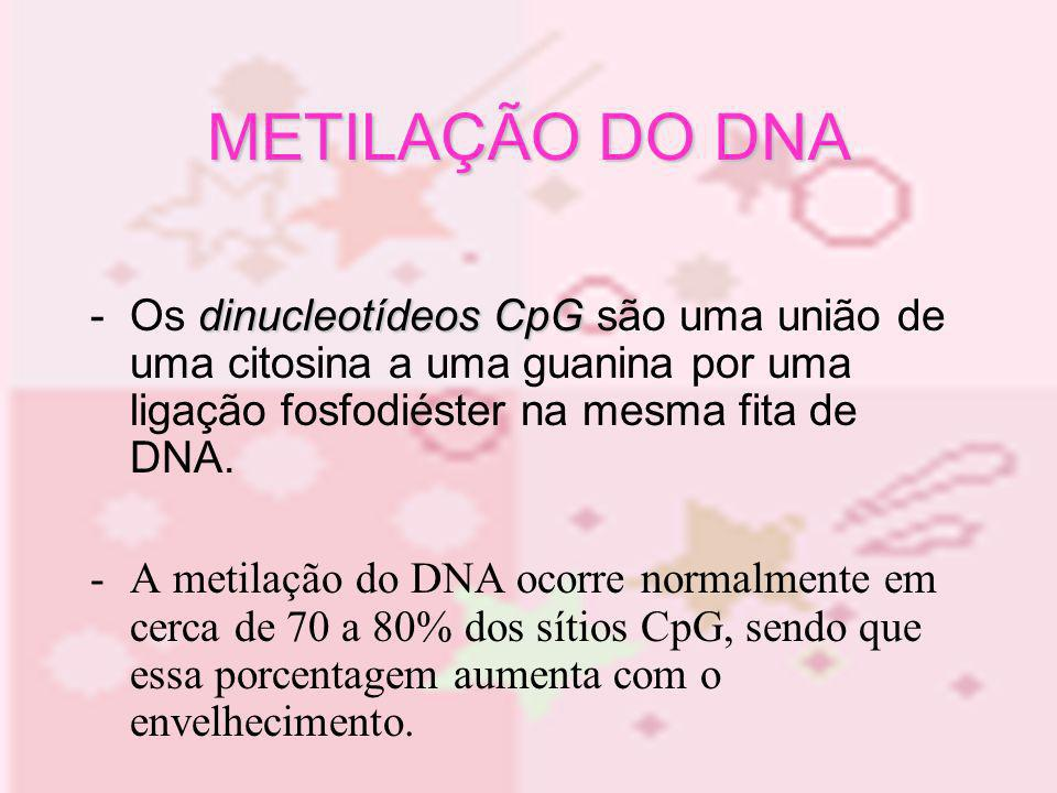 Como ocorre: - Adição de grupo metil na posição 5´ da citosina na molécula de DNA - Doador: S-adenosilmetionina - Catalisador: DNA-metiltransferases (vários tipos e isoformas – ex:metiltransferase de manutenção) METILAÇÃO DO DNA