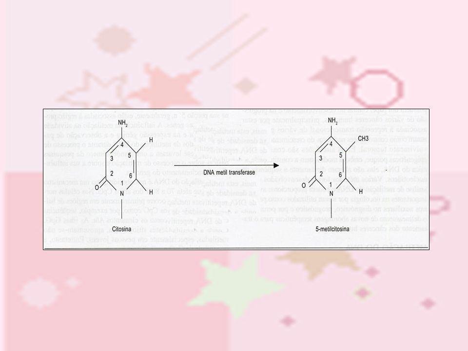 O resultado da metilação do DNA: É o silenciamento dos genes através da inibição direta ou indireta da ligação dos fatores de transcrição devido ao processo de metilação que estes sofreram.