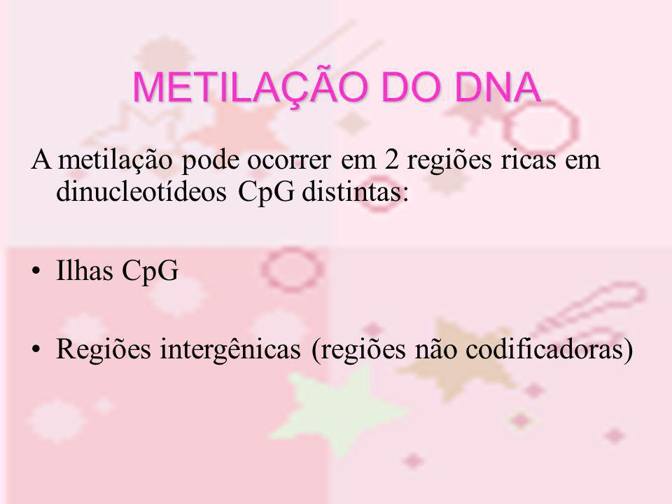 METILAÇÃO DO DNA A metilação pode ocorrer em 2 regiões ricas em dinucleotídeos CpG distintas: Ilhas CpG Regiões intergênicas (regiões não codificadora