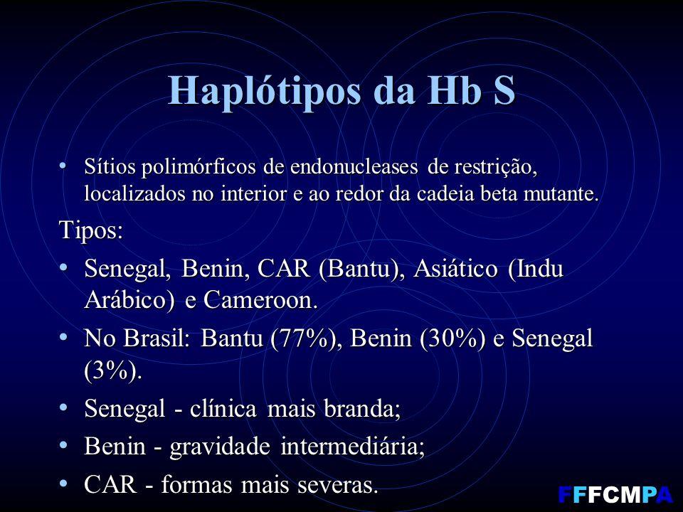 Haplótipos da Hb S Sítios polimórficos de endonucleases de restrição, localizados no interior e ao redor da cadeia beta mutante.