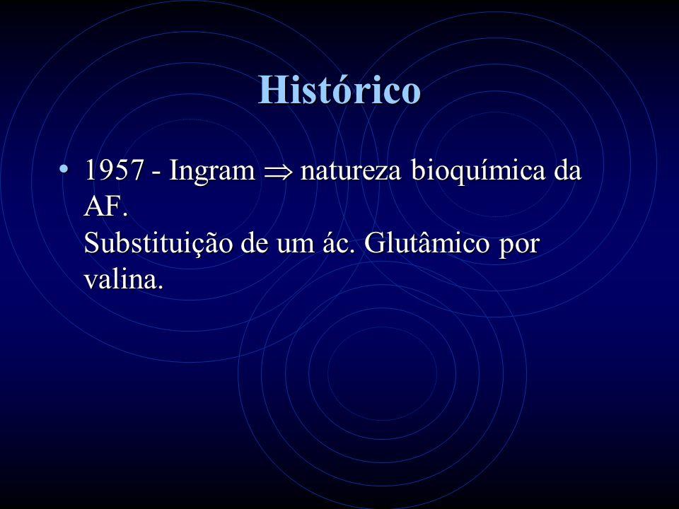 Histórico 1957 - Ingram natureza bioquímica da AF. Substituição de um ác. Glutâmico por valina. 1957 - Ingram natureza bioquímica da AF. Substituição