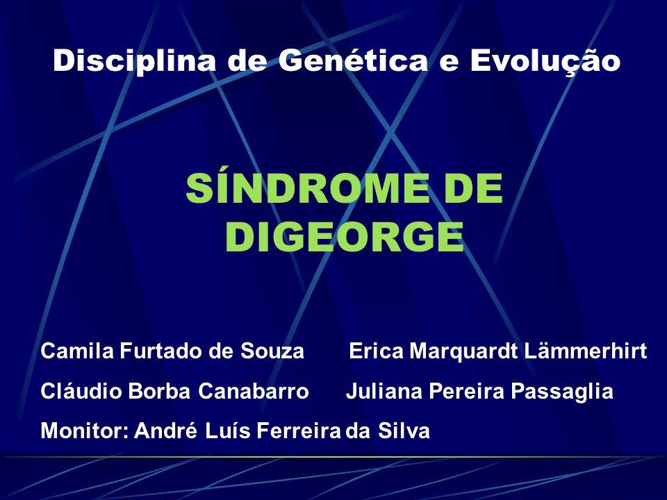 Gene candidato - Tbx1 É um fator transcricional da família T- box; camundongos com deleção deste gene apresentaram: Gene em estudos -hipoplasia de timo e de paratireóides; - alterações da via de saída cardíaca; - anomalias craniofaciais.