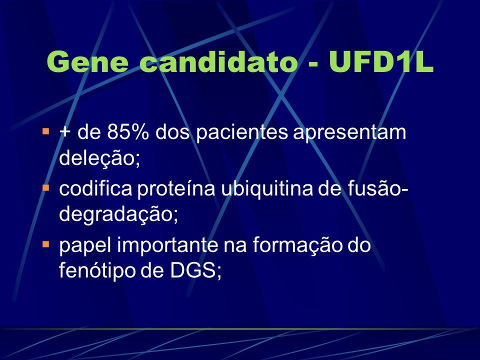Gene candidato - UFD1L + de 85% dos pacientes apresentam deleção; codifica proteína ubiquitina de fusão- degradação; papel importante na formação do f