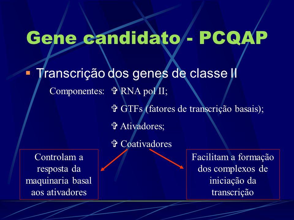 Gene candidato - PCQAP Transcrição dos genes de classe II Componentes: RNA pol II; GTFs (fatores de transcrição basais); Ativadores; Coativadores Cont