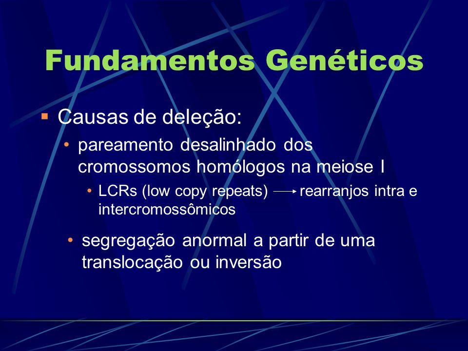 Fundamentos genéticos Translocações balanceadas: ruptura de seqüência gênica DGS pais com translocação e não afetados segregação desequilibrada na gametogênese filhos com DGS