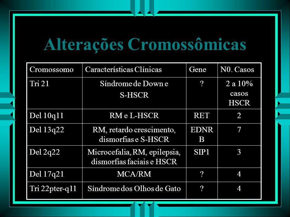 Alterações Cromossômicas N0. CasosGeneCaracterísticas ClínicasCromossomo 4?Síndrome dos Olhos de GatoTri 22pter-q11 4?MCA/RMDel 17q21 3SIP1Microcefali