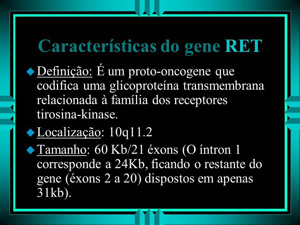 Características do gene RET u Definição: É um proto-oncogene que codifica uma glicoproteína transmembrana relacionada à família dos receptores tirosin