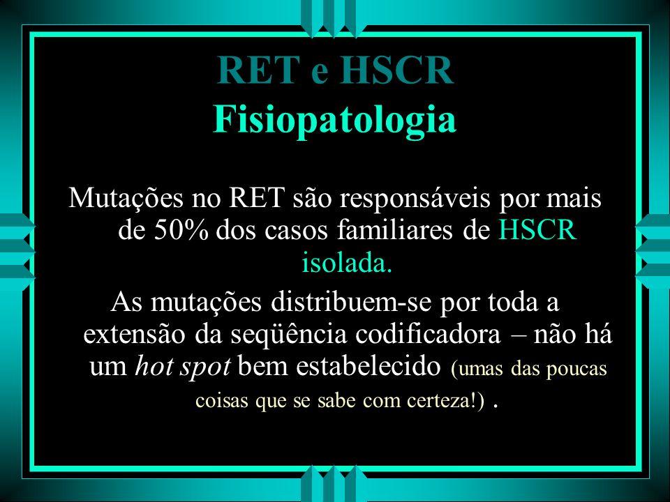 RET e HSCR Fisiopatologia Mutações no RET são responsáveis por mais de 50% dos casos familiares de HSCR isolada. As mutações distribuem-se por toda a