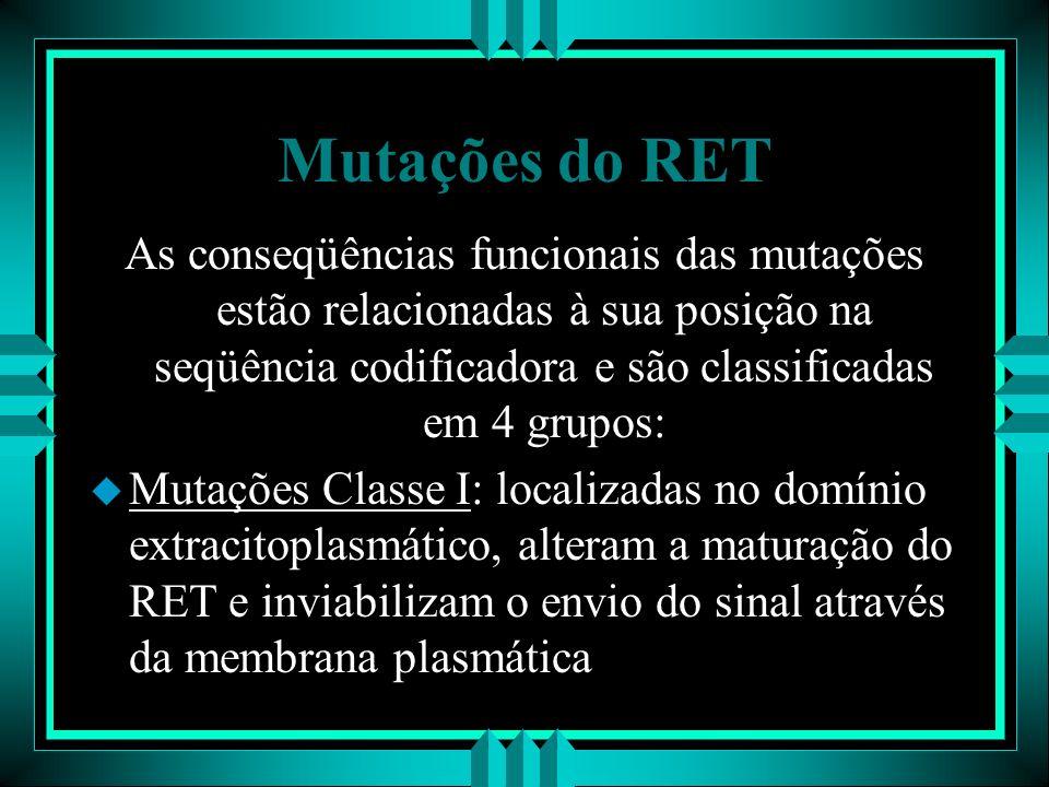 Mutações do RET As conseqüências funcionais das mutações estão relacionadas à sua posição na seqüência codificadora e são classificadas em 4 grupos: u