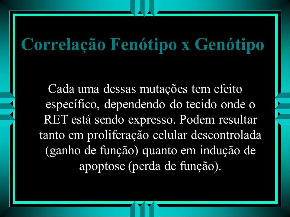 Correlação Fenótipo x Genótipo Cada uma dessas mutações tem efeito específico, dependendo do tecido onde o RET está sendo expresso. Podem resultar tan