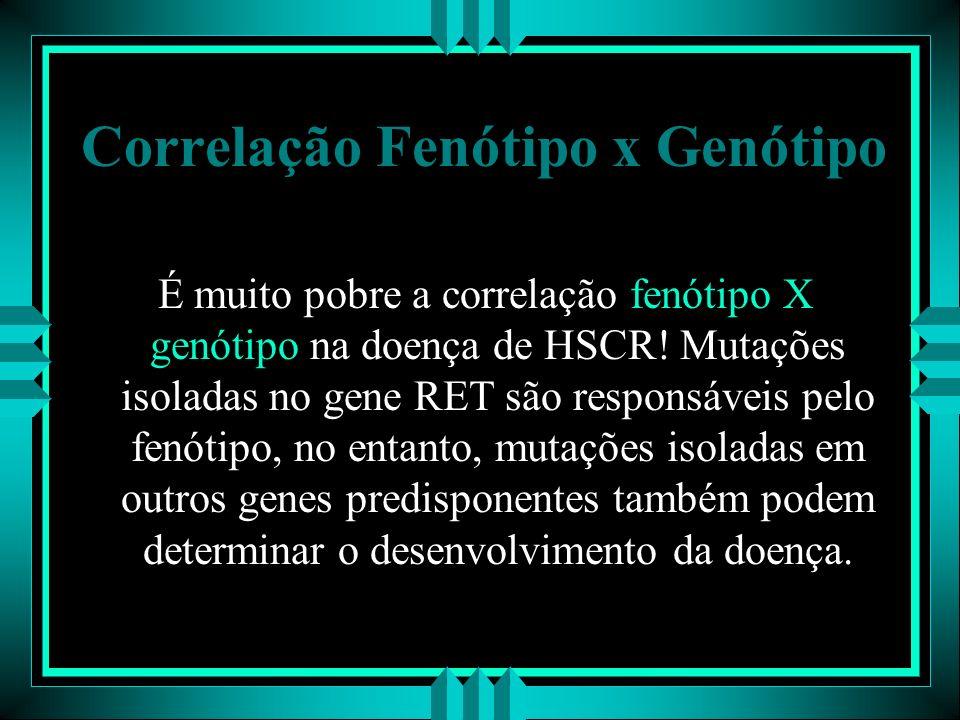 Correlação Fenótipo x Genótipo É muito pobre a correlação fenótipo X genótipo na doença de HSCR! Mutações isoladas no gene RET são responsáveis pelo f