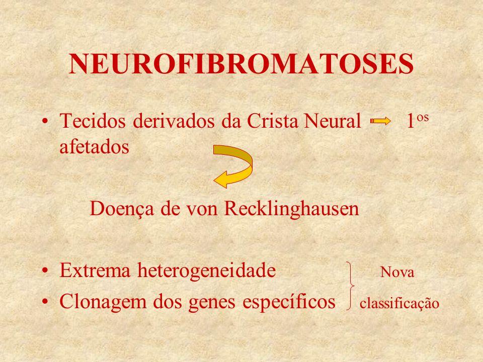 NEUROFIBROMATOSES Tecidos derivados da Crista Neural 1 os afetados Doença de von Recklinghausen Extrema heterogeneidade Nova Clonagem dos genes específicos classificação