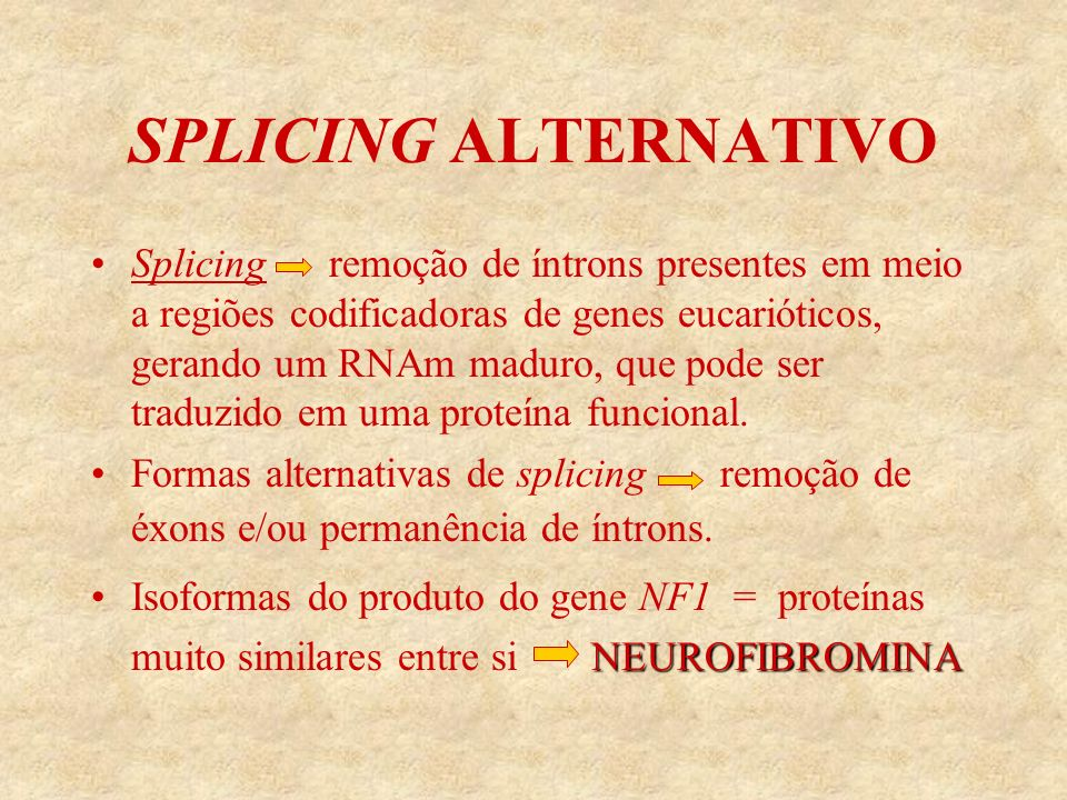 SPLICING ALTERNATIVO 4 formas alternativas de splicing: GRD II no éxon 23a da NF1-GRD 3´ALT no éxon 48a da terminação 3´ 5´ALT1 no éxon 9 5´ALT2 Isoforma específica dos neurônios, contendo o éxon 9a restrita aos neurônios do cérebro, hipocampo, tálamo e corpo estriado