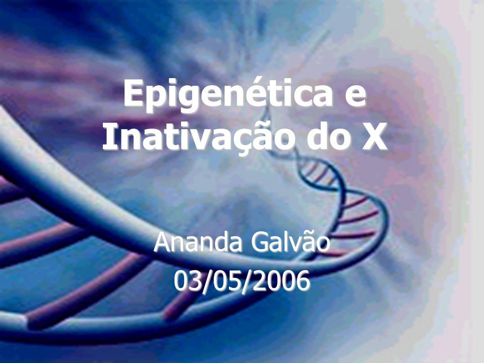 Epigenética e Inativação do X Ananda Galvão 03/05/2006