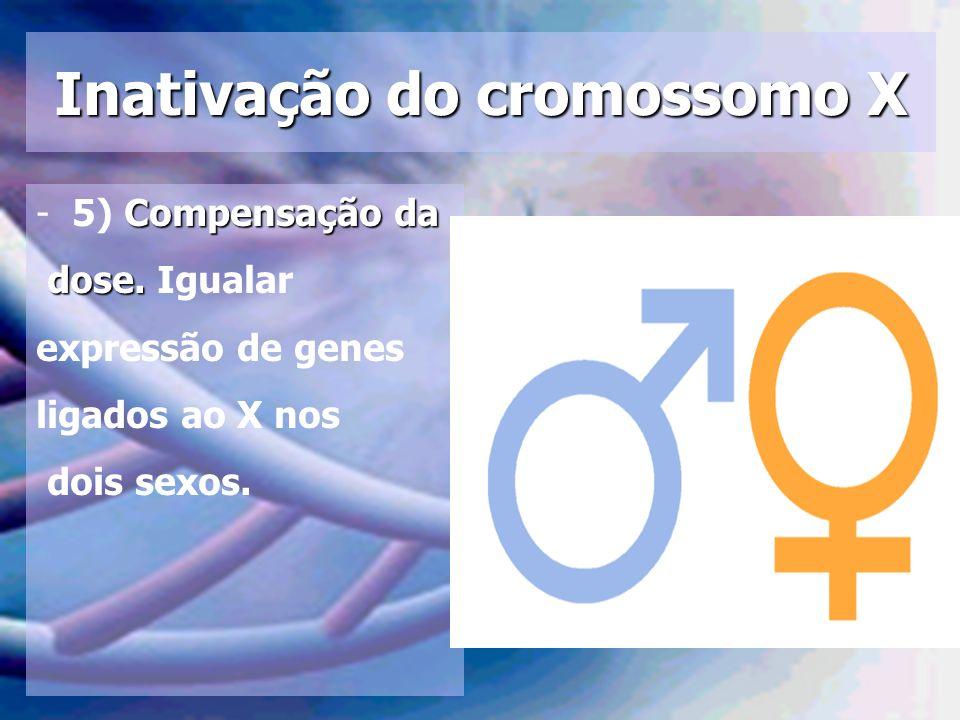 Inativação do cromossomo X Compensação da -5) Compensação da dose. dose. Igualar expressão de genes ligados ao X nos dois sexos.