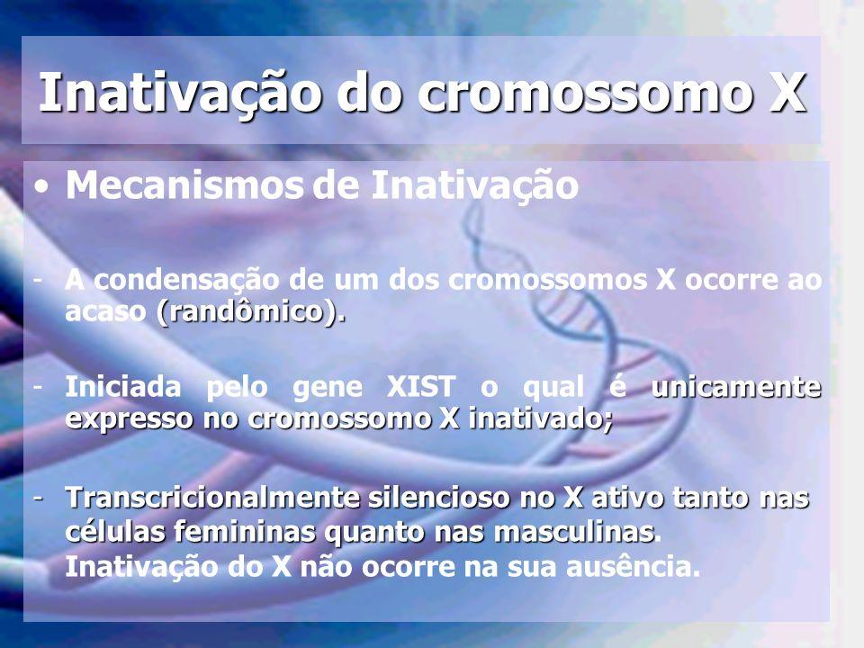 Inativação do cromossomo X Mecanismos de Inativação (randômico). -A condensação de um dos cromossomos X ocorre ao acaso (randômico). unicamente expres