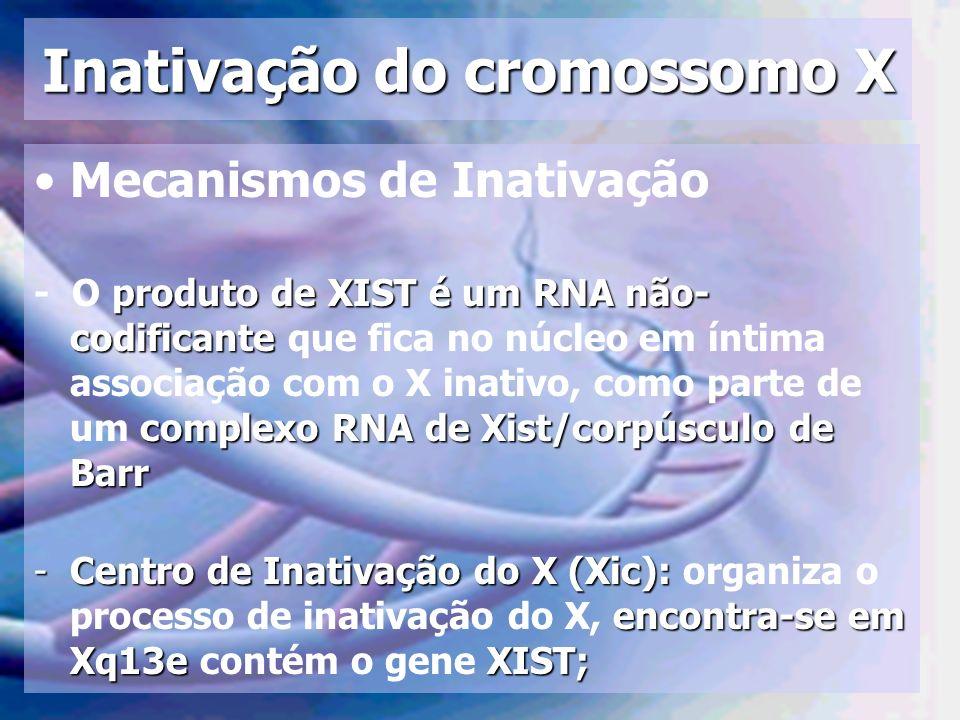 Inativação do cromossomo X Mecanismos de Inativação produto de XIST é um RNA não- codificante complexo RNA de Xist/corpúsculo de Barr - O produto de X