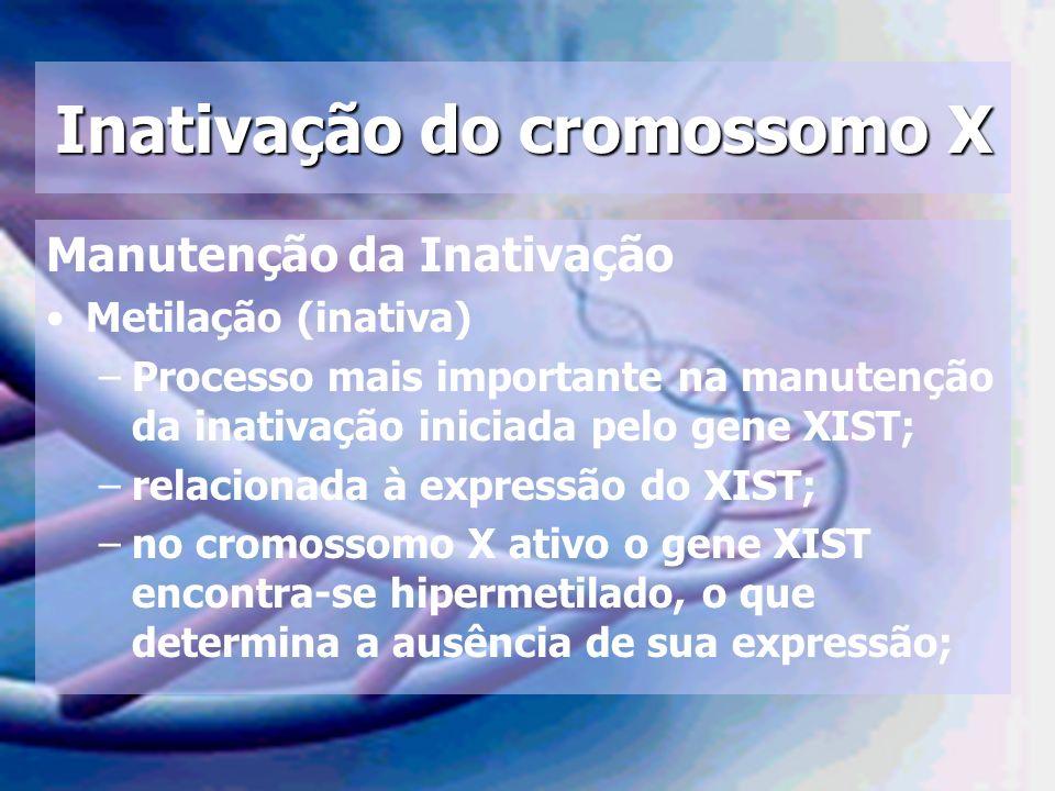 Inativação do cromossomo X Manutenção da Inativação Metilação (inativa) –Processo mais importante na manutenção da inativação iniciada pelo gene XIST;