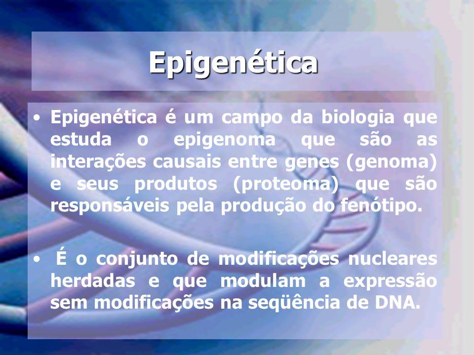 Epigenética Epigenética é um campo da biologia que estuda o epigenoma que são as interações causais entre genes (genoma) e seus produtos (proteoma) qu