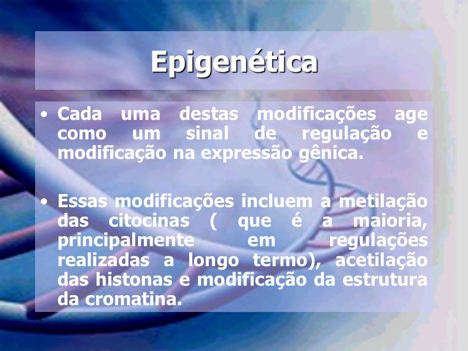 Epigenética Cada uma destas modificações age como um sinal de regulação e modificação na expressão gênica. Essas modificações incluem a metilação das