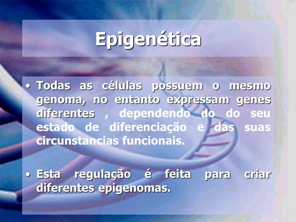 Epigenética Todas as células possuem o mesmo genoma, no entanto expressam genes diferentesTodas as células possuem o mesmo genoma, no entanto expressa
