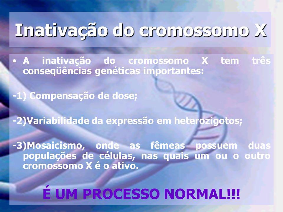 Inativação do cromossomo X A inativação do cromossomo X tem três conseqüências genéticas importantes: -1) Compensação de dose; -2)Variabilidade da exp