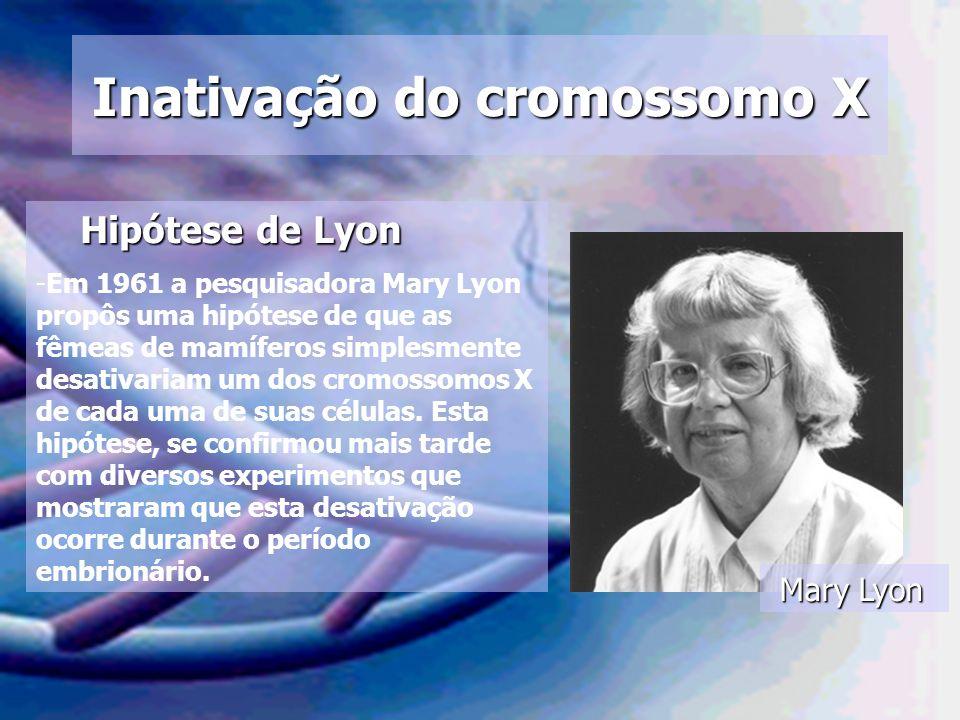 Inativação do cromossomo X Mary Lyon Hipótese de Lyon Hipótese de Lyon -Em 1961 a pesquisadora Mary Lyon propôs uma hipótese de que as fêmeas de mamíf