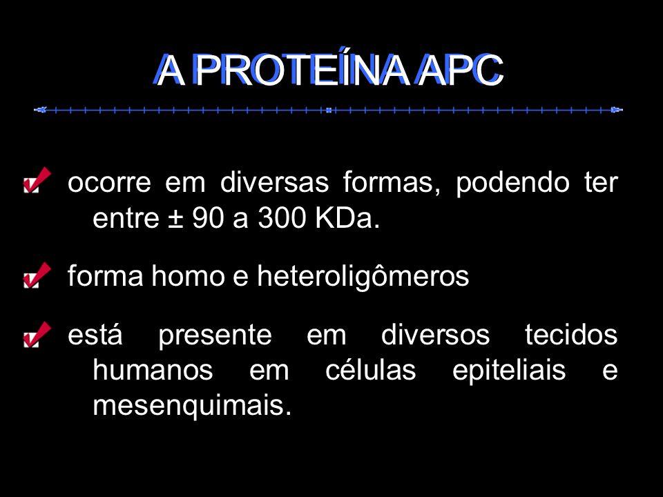 ocorre em diversas formas, podendo ter entre ± 90 a 300 KDa. forma homo e heteroligômeros está presente em diversos tecidos humanos em células epiteli