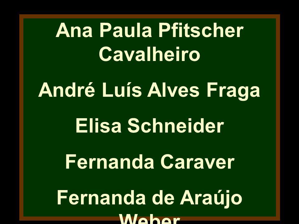 Ana Paula Pfitscher Cavalheiro André Luís Alves Fraga Elisa Schneider Fernanda Caraver Fernanda de Araújo Weber