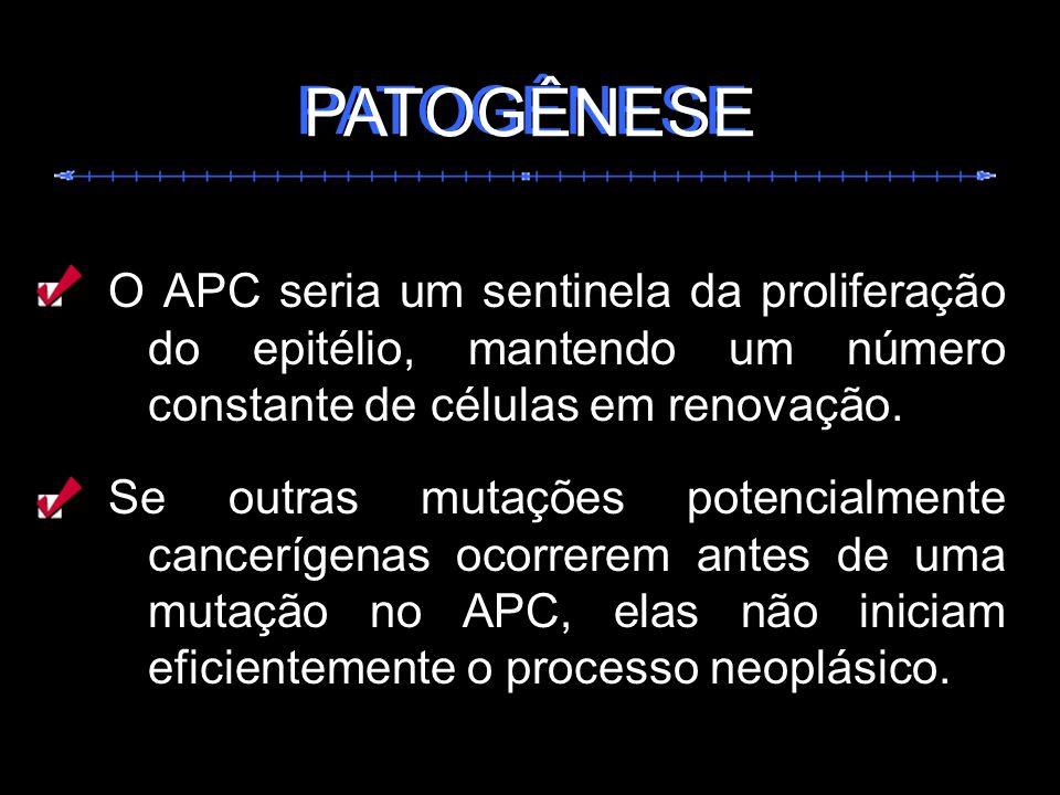 O APC seria um sentinela da proliferação do epitélio, mantendo um número constante de células em renovação. Se outras mutações potencialmente canceríg